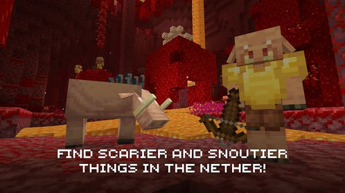 Minecraft Gallery Image #4