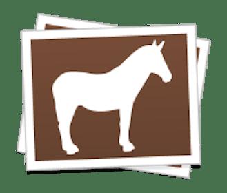 Sticker Mule Gallery Image #5