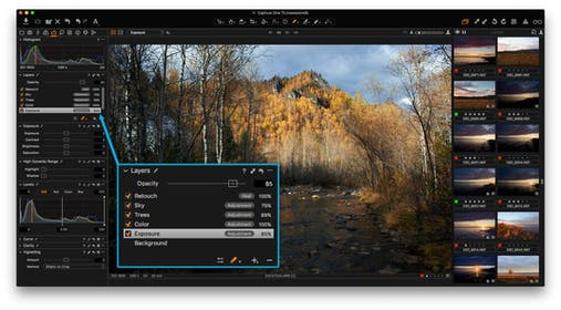 Capture One Pro Gallery Image #4