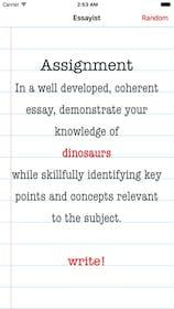 Essay Writer Gallery Image #0