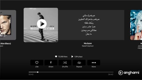 Anghami Gallery Image #24