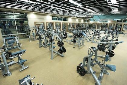 Movati Athletic Gallery Image #0