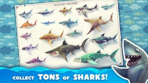 Hungry Shark World Gallery Image #1