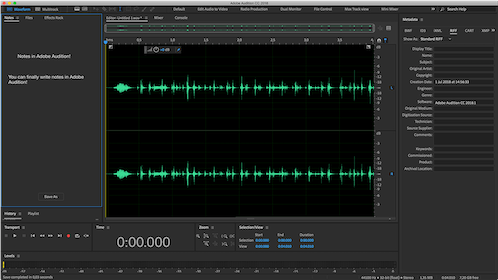 Adobe Audition Gallery Image #2