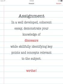 Essay Writer Gallery Image #4
