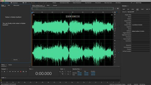 Adobe Audition Gallery Image #3