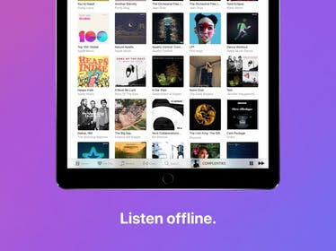 Apple Music Gallery Image #7