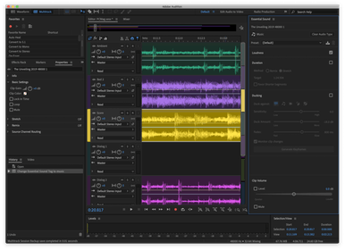 Adobe Audition Gallery Image #0
