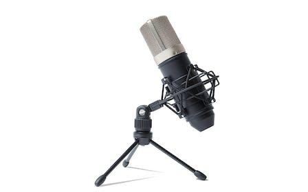 Marantz Professional MPM-1000 Large Diaphragm Condenser Microphone  Gallery Image #1