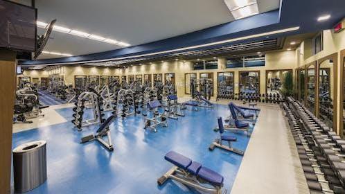 Movati Athletic Gallery Image #4