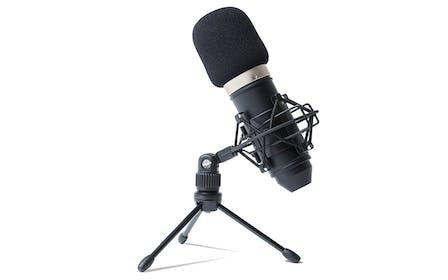 Marantz Professional MPM-1000 Large Diaphragm Condenser Microphone  Gallery Image #3