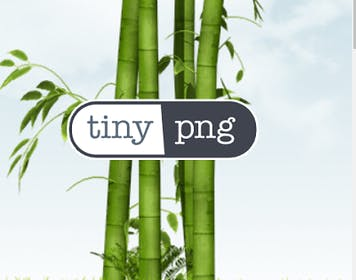 TinyPNG Gallery Image #2