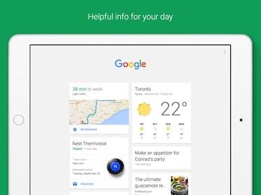 Google Gallery Image #8