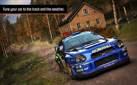 Dirt Rally Gallery Image #2