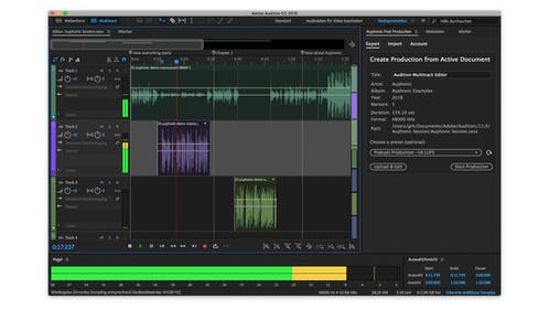 Adobe Audition Gallery Image #1