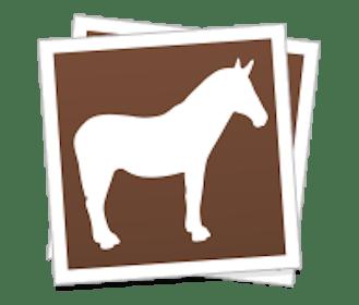 Sticker Mule Gallery Image #2