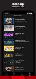Netflix Gallery Image #12