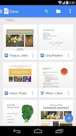 Google Docs Gallery Image #10