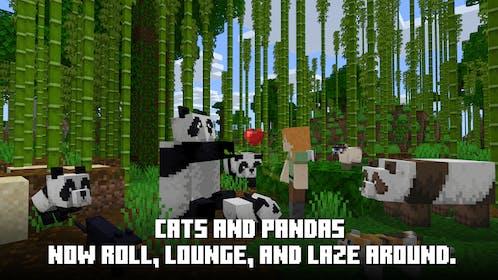 Minecraft Gallery Image #7