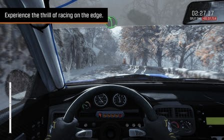 Dirt Rally Gallery Image #4