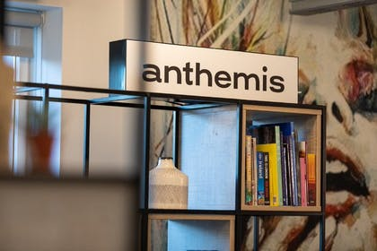 Anthemis Gallery Image #0