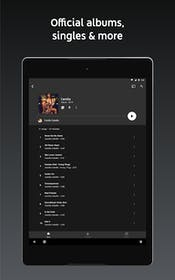 YouTube Music Gallery Image #5